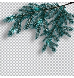 Two blue realistic branch of tree on background vector image