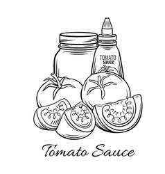 hand drawn tomato sauce vector image
