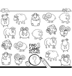 Find two same sheep characters coloring book vector
