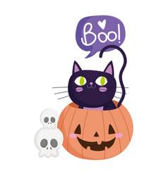 happy halloween skulls black cat inside pumpkin vector image