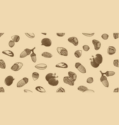 organic seeds seamless pattern vector image