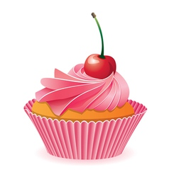 pink cupcake with red cherry vector image