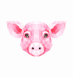 polygonal of pig vector image