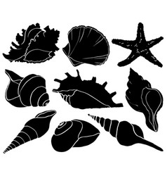 Seashells and starfish silhouettes sea mollusk vector