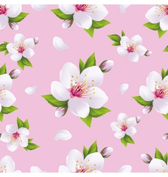 Seasonal background seamless pattern sakura vector