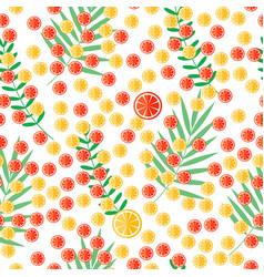 Sliced citrus and leaves lemon and orange vector