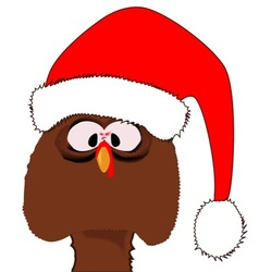 Turkey Father Christmas vector