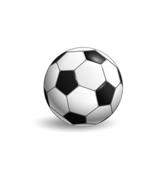 soccer ball layout isolated on white background vector image vector image