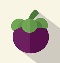 Flat Design Mangosteen Icon vector image
