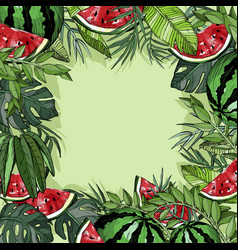 background with watermelon and plants vector image