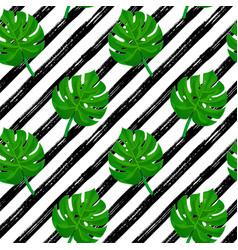 brush stroke pattern monstera vector image