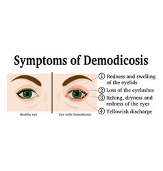 Demodicosis vector