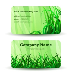 Herbal card vector