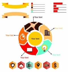Infographics business anatomy vector