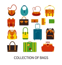 Modern Bags Ftat Colorful Icons Set vector
