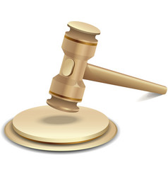 of gavel vector image