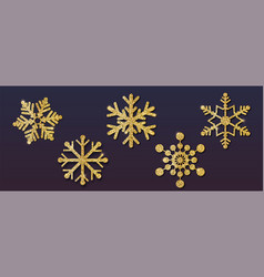 set christmas snowflakes different shapes vector image