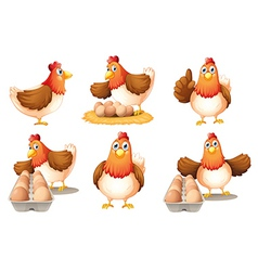 Six hens vector