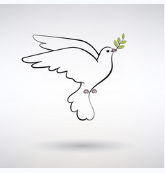 Symbol dove of peace vector