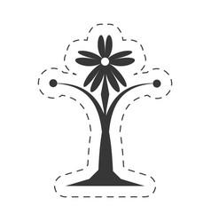 decoration ornament element floral vector image