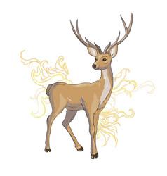 A set of deer for your design deer sika deer and vector