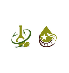 oil olive template set vector image