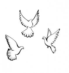 three dove vector image vector image