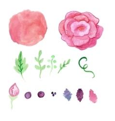 Watercolor rose splash elements set Vintage vector image vector image