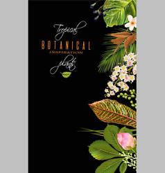 tropial plants banner vector image vector image