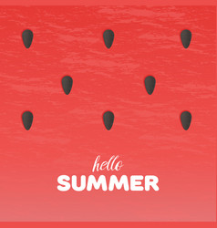 watermelon texture background with hello summer vector image vector image