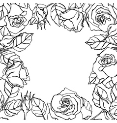 line rose square frame vector image