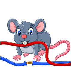 Cartoon mouse biting the cable vector
