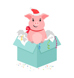 Cartoon pig in gift box vector