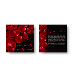 Flying petals red roses vector