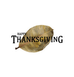 happy thankgiving quote with holiday elements vector image