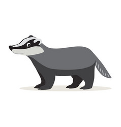 icon of gray badger isolated forest woodland vector image
