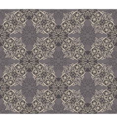 Seamless elegant lace pattern vector image vector image