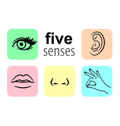 senses icons five human senses vector image