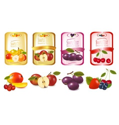 labels with fruit vector image