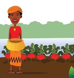 tomato garden vector image vector image