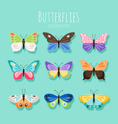 Butterfly collection spring vector