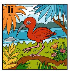 color alphabet for children letter i ibis vector image
