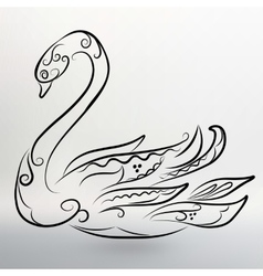 Eps 10 of Abstract black swan vector