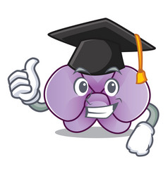 Graduation orchid flower character cartoon vector