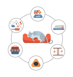 round infographics pet care stuff set elements vector image