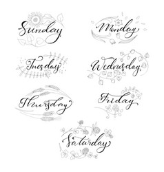 set of hand drawn days of the week vector image