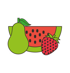 watermelon pear and strawberry fresh vector image