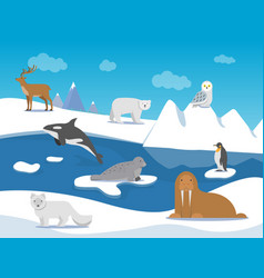 arctic landscape with different polar animals vector image