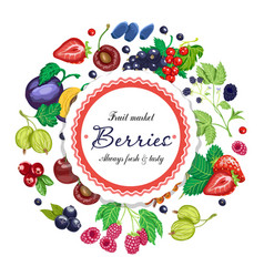 Background with various berries arranged in vector