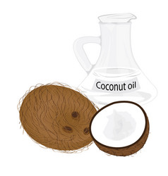 Coconuts and coconut oil in a jar vector
